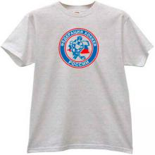 Ice Hockey Federation of Russia T-shirt in gray