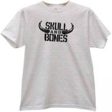 Skull and Bones Funny T-shirt in gray